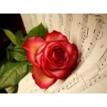 Два сборника романтической музыки