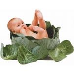 Стати сурогатними матерями чи донорами яйцеклітин