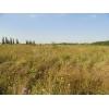 Продаётся земельный участок в ст.  Новодмитриевской