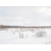 Коммерческая земля сельхоз назначения,   г.   Верея,   р-н д.   Лобаново,   Наро-Фоминский район,   Минское шоссе,   120 км от М