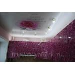 Мрия-Натяжные потолки в Смоленске